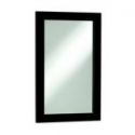 Deals List: Style Selections Euro Style 30-in H x 20-in W Espresso Rectangular Bathroom Mirror