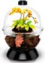 Deals List: Wonder Bubble Betta Aquarium