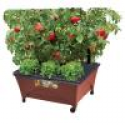 Deals List: City Pickers Raised Garden Bed Kit