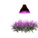 Deals List: TaoTronics® LED Plant Grow Light For Hydroponic Garden Greenhouse(TT-GL20, 12W,E27, 3 Bands)