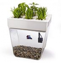Deals List: Back to the Roots Aquafarm Aquaponic Indoor Garden with Self Cleaning Fish Tank