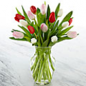 Deals List:  Valentines Day Red 1 Dozen Long Stem Roses w/Vase