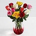 Deals List: One Dozen Rainbow Valentines Day Roses