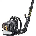 Deals List: Poulan Pro 967087101 48cc Backpack Blower