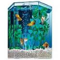 Deals List: 1-Gallon Tetra Hexagon Aquarium Kit with LED Bubbler