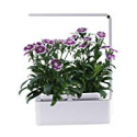 Deals List: AIBIS Hydroponics Watering Growing System
