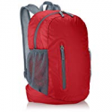 Deals List: AmazonBasics Ultralight Packable Day Pack
