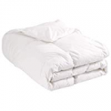 Deals List: Puredown All Season Luxury White Down Comforter Twin XL