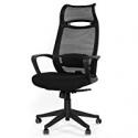 Deals List: GreenForest Ergonomic Office Chair High Back Desk Chair