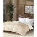 Deals List: Premier Comfort Reversible Velvet & Sherpa Down Twin Comforter