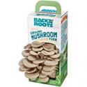 Deals List: Back to the Roots Organic Mushroom Farm Grow Kit