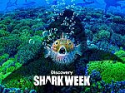Deals List: Disney Channel Shark Week [Season 2019] (Digital HD)