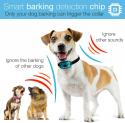 Deals List: DogRook Dog Bark Collar- Humane Anti Barking Training Collar - Vibration No Shock Dog Collar - Stop Barking Collar for Small Medium Large Dogs - Best No Barking Dog Collar