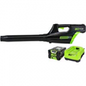 Deals List: Greenworks 2400102 80V Digipro Cordless Leaf Blower Kit