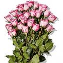 Deals List: Whole Trade Double Dozen Bunch of Roses
