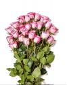 Deals List: 24-Stem Bunch Of Roses