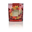 Deals List: ScentWorx by Harry Slatkin Scarlet Leaves 14.5-oz Candle Jar