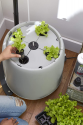 Deals List: Root Farm Hydroponic Garden System for Hydroponic Plants