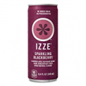 Deals List: IZZE Sparkling Juice, Blackberry, 8.4 Fl Oz (24 Count)