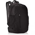 Deals List: AmazonBasics Ultralight Portable Packable Day Pack