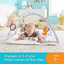 Deals List: Fisher-Price Perfect Sense Deluxe Gym, Plush Infant Play Mat with Toys