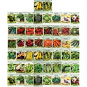 Deals List: 50 Packs Assorted Heirloom Vegetable Seeds 20+ Varieties All