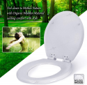 Deals List: Dalmo DBTS02S Toilet Seat w/Soft Close & Non-Slip Seat Bumpers