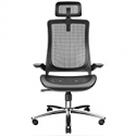 Deals List: BILKOH Ergonomic Office Chair with Breathable Mesh Seat
