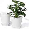 Deals List: POTEY 6.5 Inch Plastic Indoor Pots w/Drainage Holes and Tray
