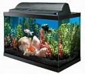 Deals List: Aqueon Aquarium Kit 10 Gallon