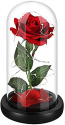 Deals List: Disney Beauty and the Beast Enchanted Rose Snowglobe