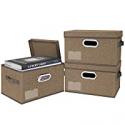 Deals List: 3-Pack BALEINE Storage Bins with Lids