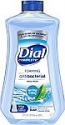 Deals List: Dial Complete Antibacterial Foaming Hand Soap Refill, Spring Water, 32 Fluid Ounces